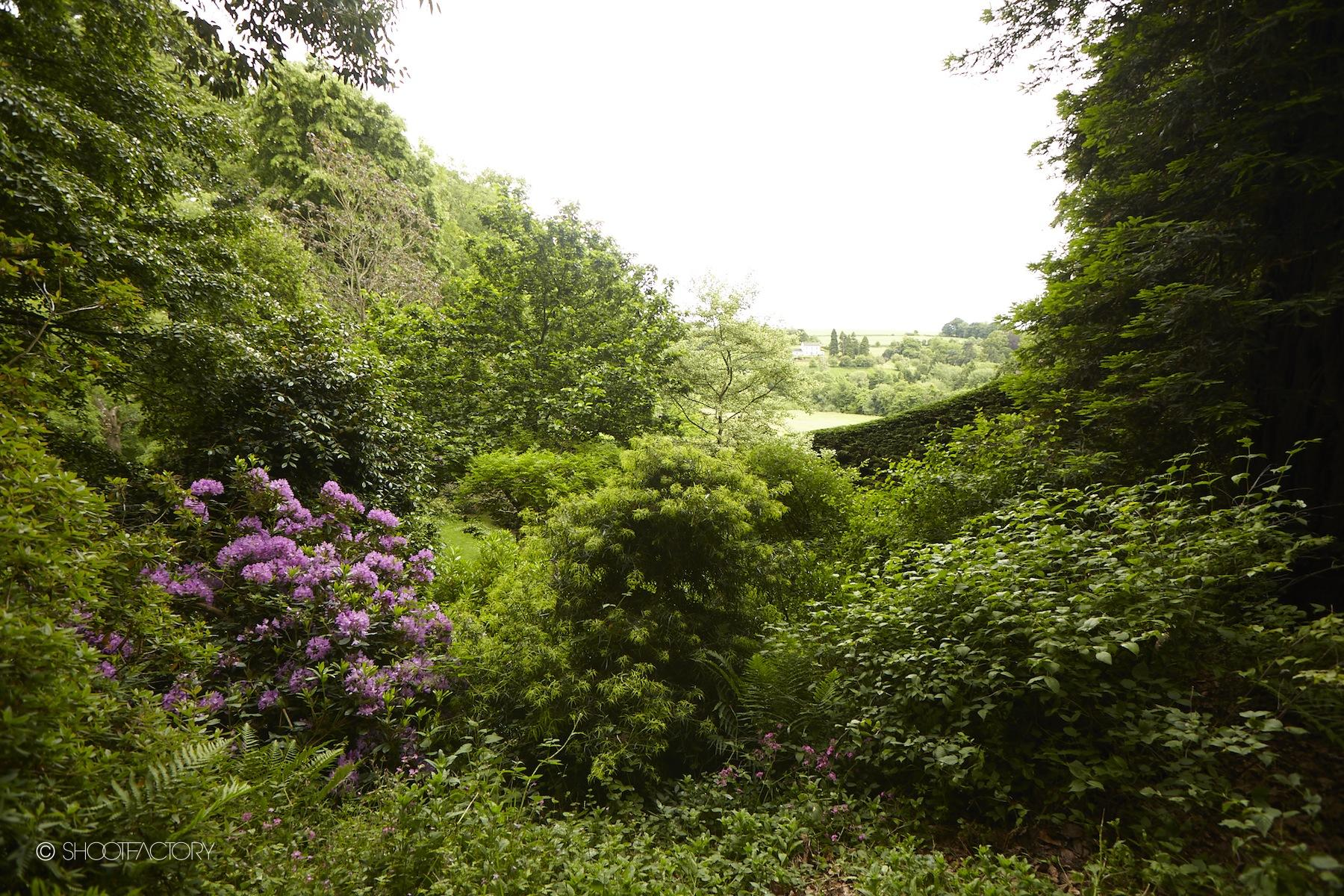 garden dell view