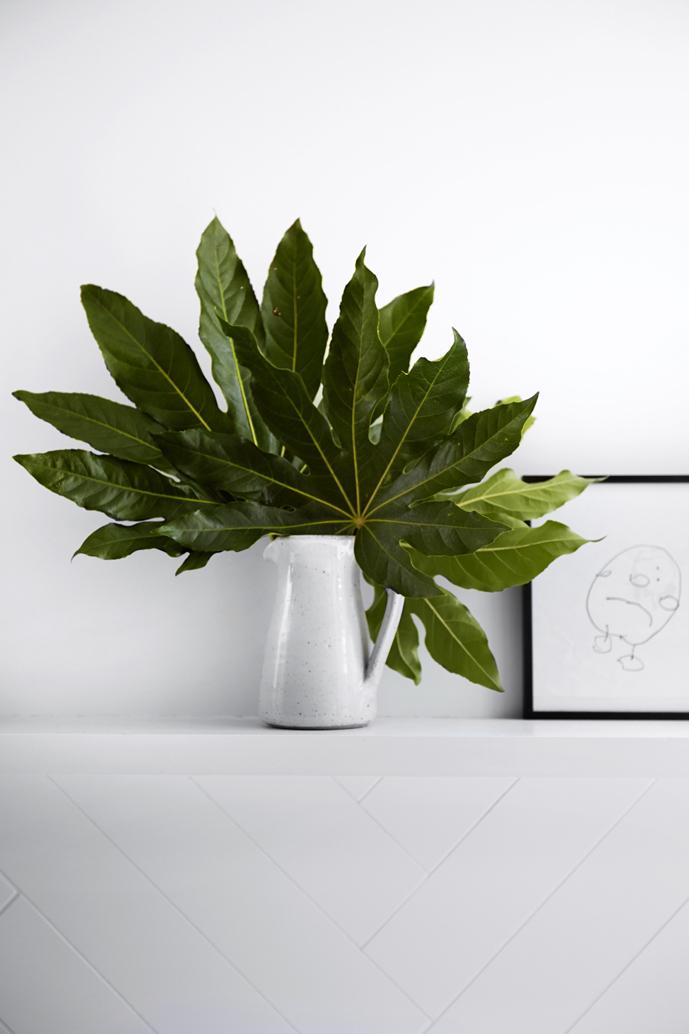 Indoor Plants - Design Trends - Shootfactory