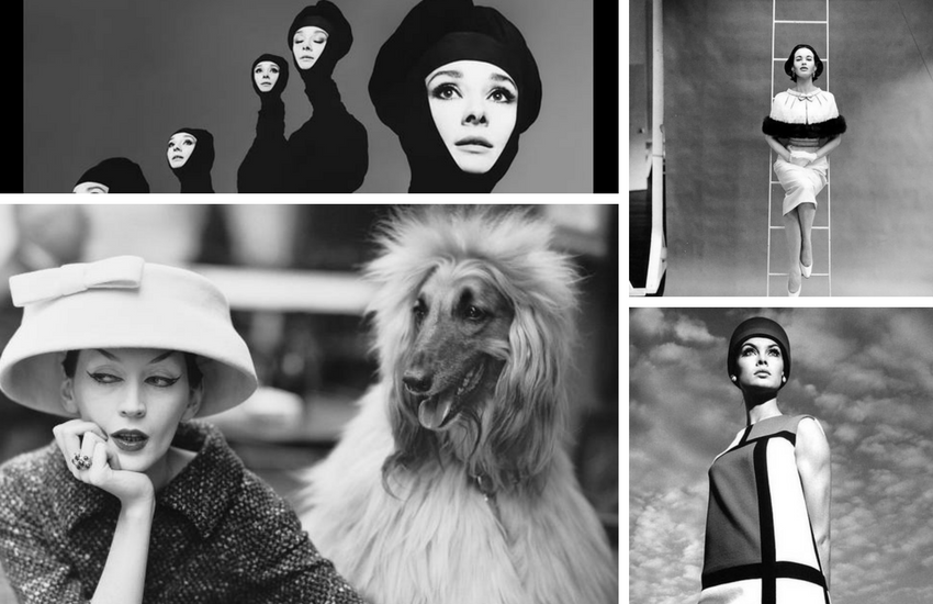 Richard Avedon - Fashion Photography - Shootfactory